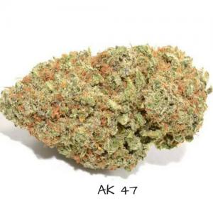 AK 47 strain weed