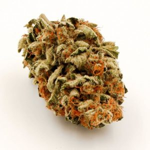 Buy lemon og strain