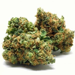 Buy orange kush weed