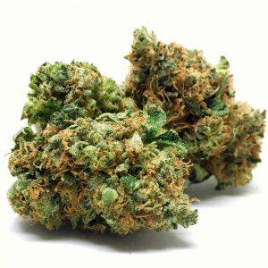 Buy orange kush weed