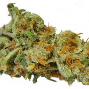 Buy Pineapple Kush Strain
