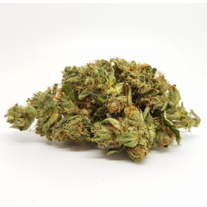 buy northern lights weed