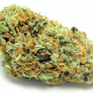 Buy Green Crack Strain