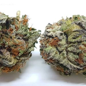 Buy Purple Haze Strain